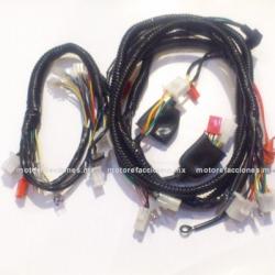 Arnes Completo - Italika GS150 / GTS175 / GSC150 / GSC175 - Vento Phantom 9i (estator monofasico) VERSION 1