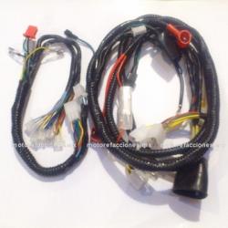 Arnes Completo para Motoneta - Italika GS150 LED / GTS175 LED (adaptable a TS170) (estator trifasico)