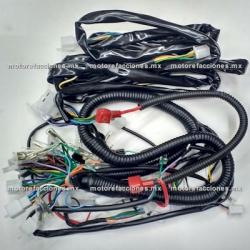 Arnes Completo Motocarro Dazon 200 (CDI tipo AC)